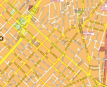 sao paulo wall map